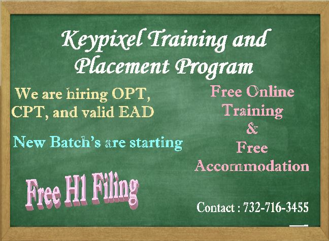 Training and Placement Program